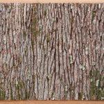 Cirrus - Paysage psychique, 2012 - écorces de chêne sur cadre massif en chêne, 212 x 135 cm